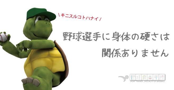 yakyukata_article101