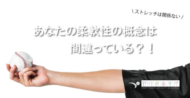 yakyukata_article167