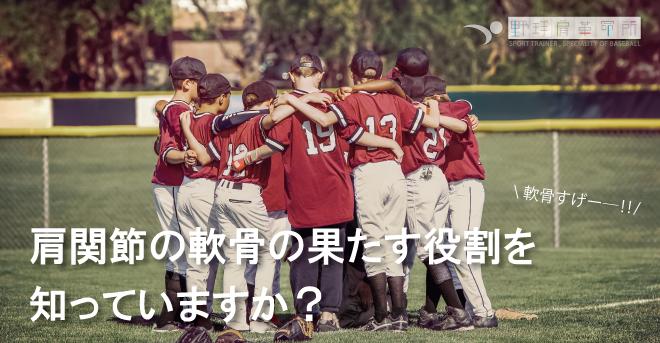 yakyukata_article210