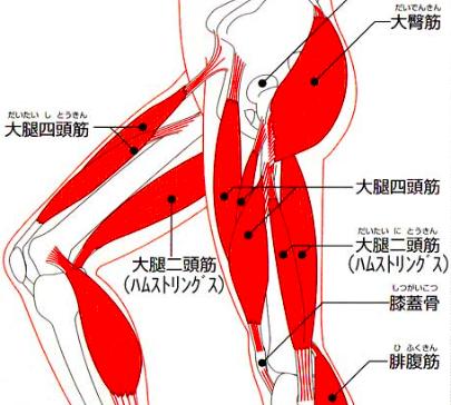 yakyukata_article409-2